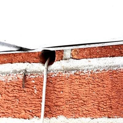 mouse-inspection - Pest Control Toronto